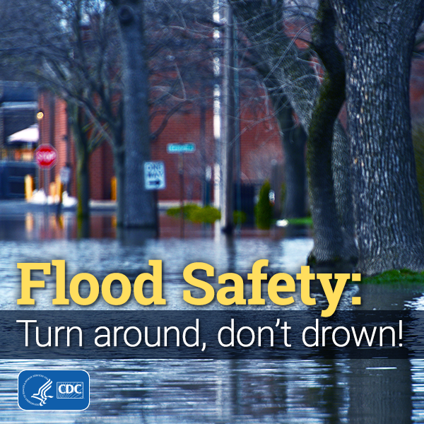 flood safety: turn around, don't drown